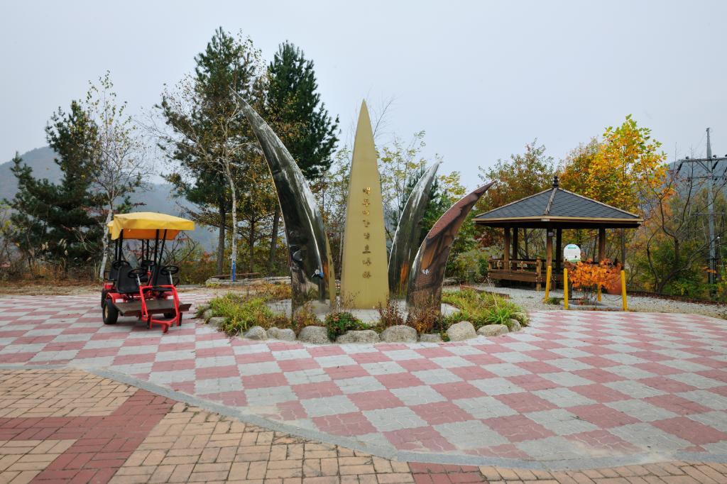 정선백두대간약초마을