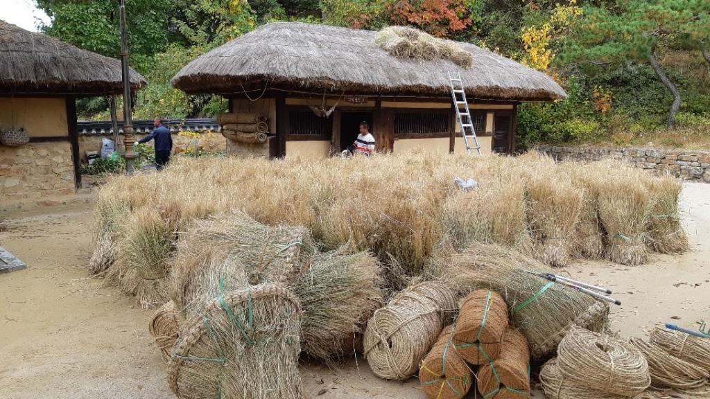 2021 김유정생가 이엉갈이 한마당