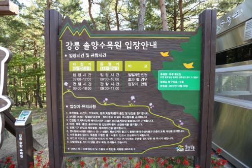 강릉솔향수목원 9