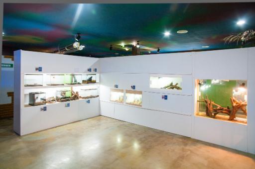 자연아놀자 체험학습박물관 3