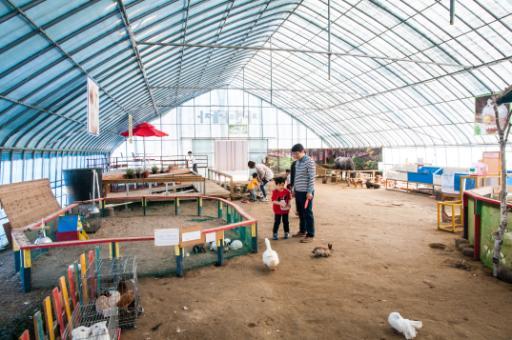 자연아놀자 체험학습박물관 6