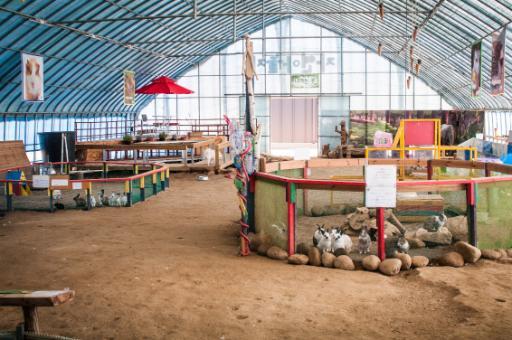 자연아놀자 체험학습박물관 8