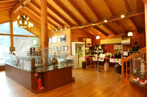 커피박물관 5