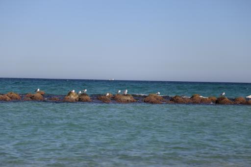 강문해변 3