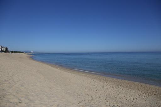 안목해변 3