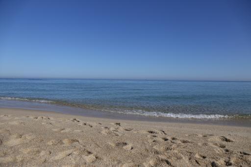 안목해변 6