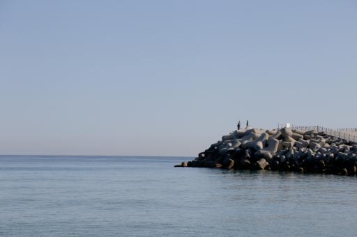 안목해변 7