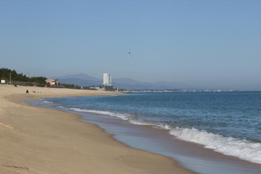 안목해변 8