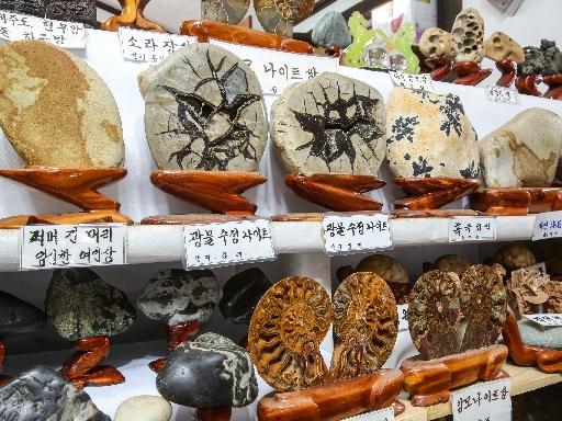 소금강 돌박물관 3