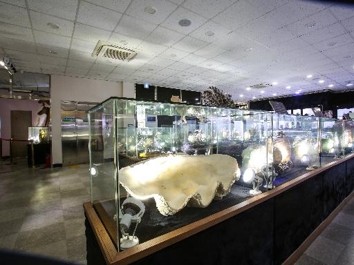 주문진해양박물관 2