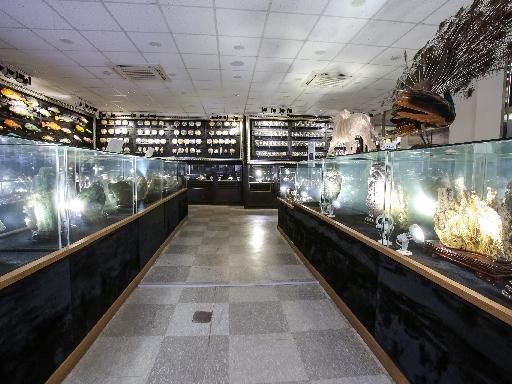 주문진해양박물관 5