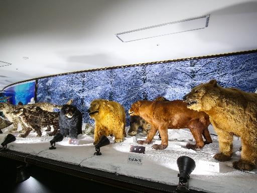주문진해양박물관 10