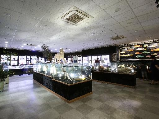 주문진해양박물관 12