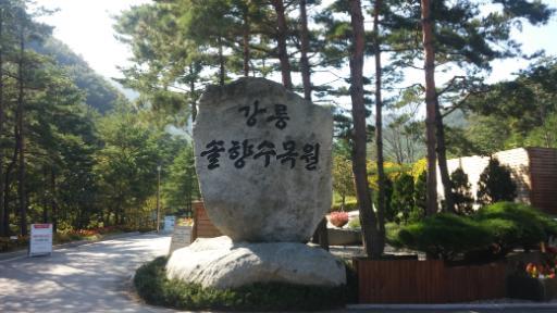 강릉솔향수목원